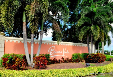 Buena Vida Wellington Real Estate - Tricoli Team Homes