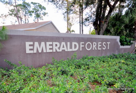 Emerald Forest Wellington Real Estate - Tricoli Team Homes