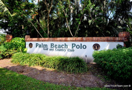 Palm Beach Polo Golf and Country Club Wellington Real Estate - Tricoli Team Homes