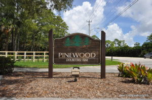 Pinewood Doubletree Trail Wellington Real Estate - Tricoli Team Homes